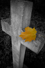(~~StuArt~~) Tags: autumn church graveyard leaf cross northumberland gravestone canoneos400d longhorsley superhearts