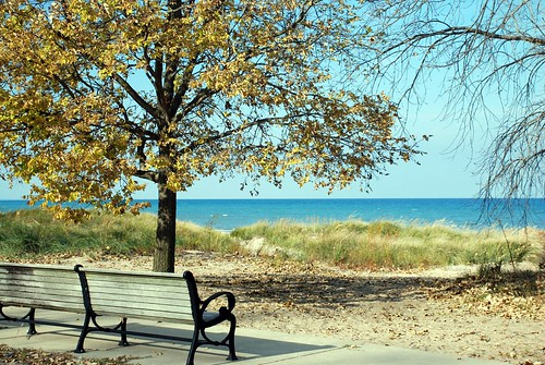 Lakefront bench in autumn