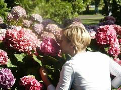 PICT0528.JPG (Gail Chris Spinks) Tags: victoriabc florafauna