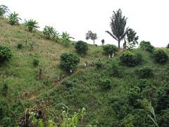 IMG_0721 (ashleysales) Tags: trek thailand hilltribe