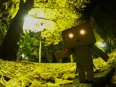 DANBOARD (ALTZERO) Tags: fisheye figure  revoltech