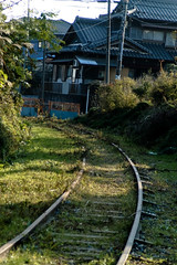 branch line to the limestone mine(dead) (Yohei Morita) Tags: geotagged rail abolishedline geo:lat=35389 geo:lon=13657591 halfdeadrailroads almostdeadrailroads deadrailroad japaneseabolishedrailroadassociation