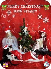 Christmas 2007 (EvilAngel (Milk&Strawberries)) Tags: white ciel belle bjd dollfie luts dim ai choa uriel petiteai customhouse latidoll belita lati dimdoll christmas2007 musedoll dollinmind