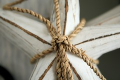 beach starfish rope tied decor panamacity beachdecor