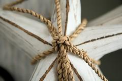 beach starfish rope tied decor panamacity beachdecor