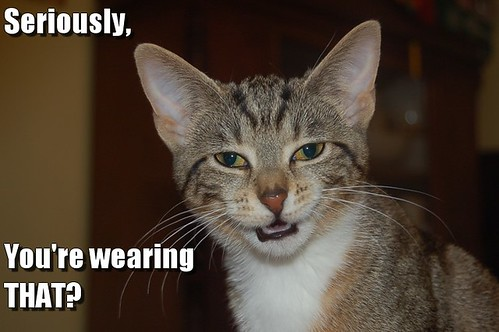 Seriously, you're wearing THAT?
