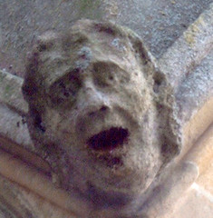 anguish (Quiet World) Tags: face cathedral wells horror anguish