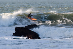 Surfing at Fort Point