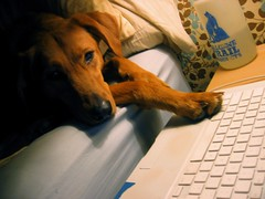 Oh, just bloging