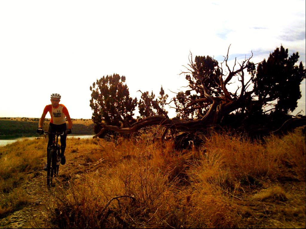 voodoo trail 004