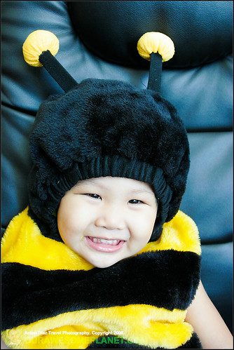 Aidan Bumble Bee