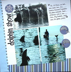 DolphinShow @ Shedd Aquarium