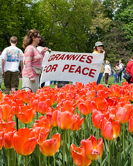 Tulip Festival - Grannies For Peace (Mountain Visions) Tags: newyork pentax protest albany limited tulipfestival washingtonpark 518 centersquare tulipqueen jerryjennings k20d granniesforpeace mountainvisions da35mm sarahvolk pentaxsmcpda21mmf32al pentaxsmcpda35mmf28
