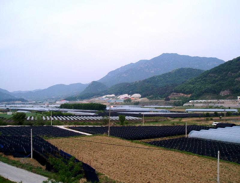 Seodaesan Mt., Geumsan county