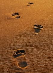 When you are with me (Lazyousuf) Tags: newyork beach footprints longisland fireisland fireislandny explored explore15 seventeen7photo