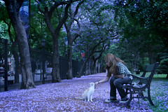 Ultraviolet (Celeste) Tags: flowers blue tree argentina girl beautiful cat buenosaires purple buenos aires botanico jacaranda jardnbotanico celesteromero