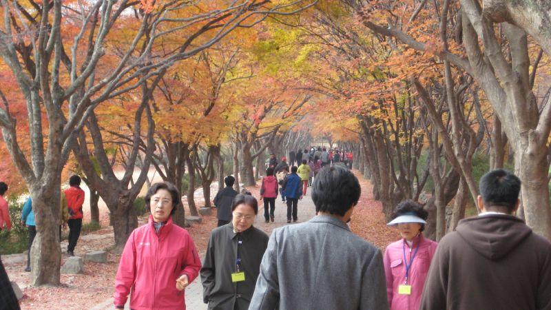 Daejeon 043