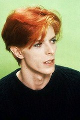 The man who fell to earth (b_grrrlie) Tags: bowie