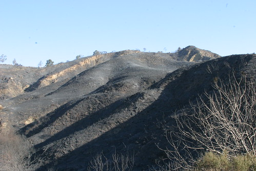 latigo canyon