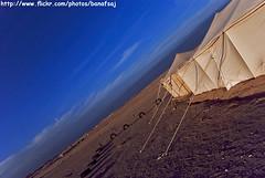 Winter Day (Banafsaj_Q8 .. Free Photographer) Tags: winter camp club photography day desert kuwait kw q8 بيت bayt lothan kuw مخيم nikond80 الفوتوغرافي للتصوير banafsaj لوذان الصبيه