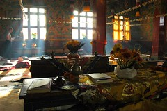 atmosphere of a Tibetan monastery .... Tharlam Monastery shrine room at break, light filtered by incense, with western Tibetan Buddhist student reading, Bodhisattva Vows day, Boudhanath, Kathmandu, Nepal (Wonderlane) Tags: travel flowers nepal decorations light sun religious reading student shrine break quiet path room buddhist smoke traditional religion murals buddhism exhibit blessing monastery western tibetan kathmandu practice tradition seedpods spiritual enlightenment result incense streaming shrineroom oneperson patience nationalgeographic initiation boudha buddhists filtered empowerment strung magiclight bodhanath tibetanbuddhist filteredsunlight 3421 wallmurals imagesoftheworld tharlam monasteryinterior lamdre bodhisattvavows tharlammonastery atmosphereofatibetanmonastery tibetanmonasteryinteriors interiorofatibetanmonastery