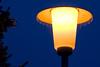 Ice Rain - IMG_6474-Lightroom-28.0-135.0 mm-135 mm-1-8 sec at f-8.0-ISO 100 (Andreas Helke) Tags: lamp ice rain icerain night light sky backgroundsky eveningsky evening winter lightroom explorepotential eis objekt eisregen himmel abendhimmel creidlitz 20080105152 fav pi529 20080106213 pi287 0108 candreashelke deutschland europa f8 20080121424 example fav2andmore 2008 20090105954 fav5andmore topv111 200902101015 object twa popularold popular fav5 upload2008 germany europe worldsfavorite canoneos350d canon dslr donothide y