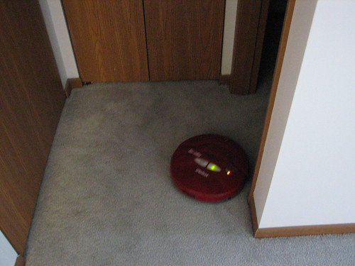 Roomba at work and play