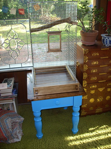 Bird Cage/Habitat