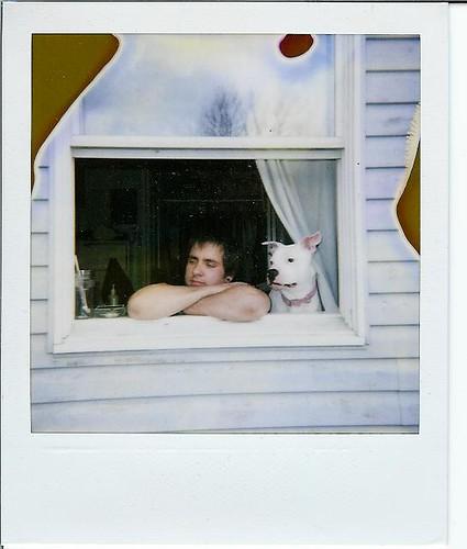 Pola Dogs---Nick & Loca