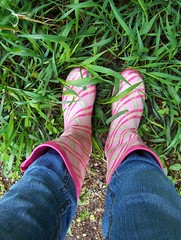 55/365 (betherann) Tags: pink feet self montana boots missoula jeans lookdown 365days spring2008