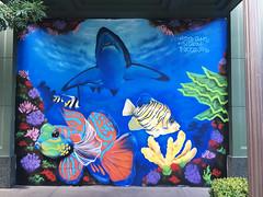 Shark Reef by Mister Gum