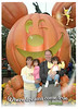 Halloween at Disney family picture