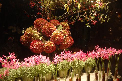 FlowerShopWindowAtnight