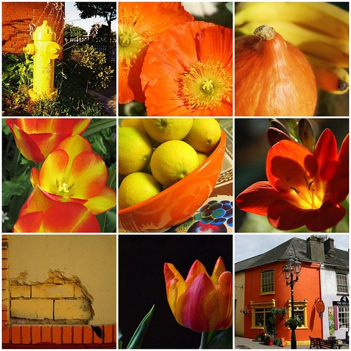 fav's from color+color: week 25 orange+yellow