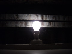 IMG_0060.JPG (craigpeers9) Tags: old light bulb idea