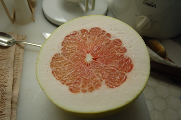 inside_grapefruit