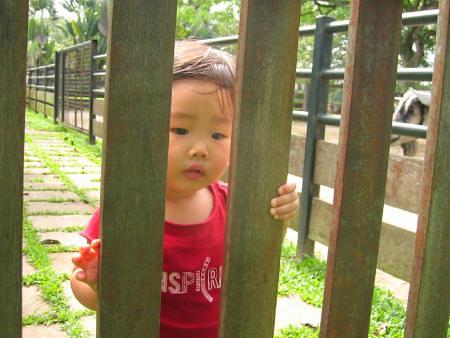 Talia At Animal Resort