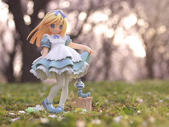 Alice's Adventures in Wonderland (ALTZERO) Tags: alice figure e3    bfigure jfigure