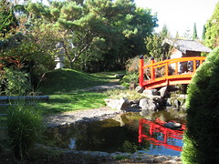 Japanese Garden (miasmakat) Tags: camera gardens japanese tassie