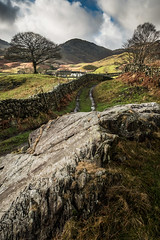 The Little House Down The Lane (Dave Fieldhouse Photography) Tags: landscape lakedistrict cumbria nationalpark littlelangdale langdale lancashirelife lakes winter drystonewall fells mountains trees fuji fujifilm fujixt2 roadside countryside