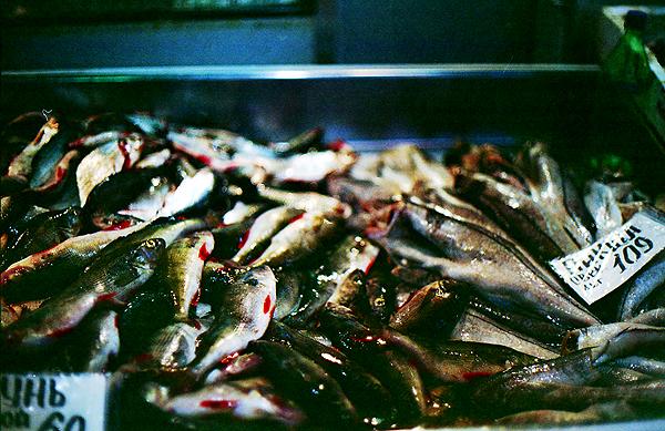 kupchino market