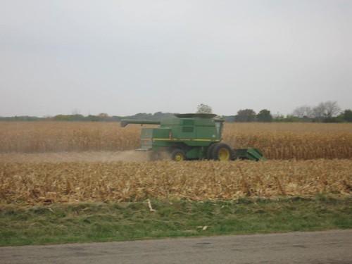 Harvest 005