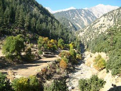 Achulgah valley, Hindukush,Chitral (imranthetrekker , new year new adventures) Tags: pakistan snow afghanistan mountains history tourism church nature architecture river oak adventure glaciers greenery peshawar suspensionbridge polo nwfp juniper mosques shepherds silkroute chitral khyberpass hindukush terichmir romboor torkham imranthetrekker imranschah northpakistan kalashvalleys shandoorpass muhabbatkhanmosque bamborate chitralguy thecastleoffairies trekkinginkalashvalleys shandoorfestival stctahedral kalashpasses donsonpass kundayakpass