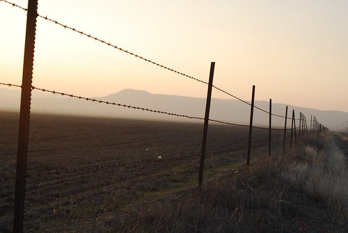 Misty Sunset Fence