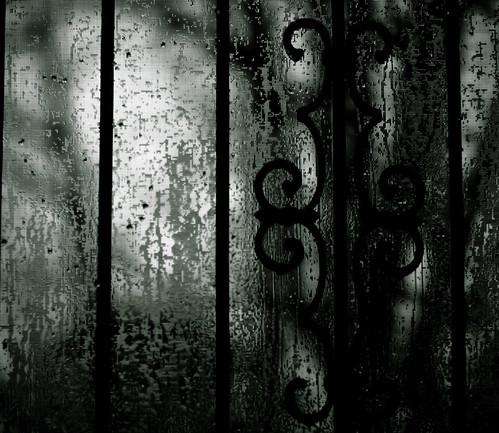 Rainy Day Shooting II