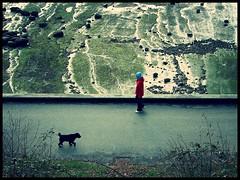 Earthlings (sp_clarke) Tags: people beach walking seawall stanleypark