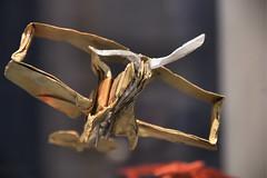 carta volante (photolupi) Tags: dof volo trento click carta trentino aeroplano sfida photolupi
