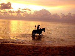 Jamaica, Negril, Sunset (esinuhe69) Tags: sunset red sea horse cloud beach island tramonto nuvole mare jamaica caribbean rosso cavallo spiaggia negril isola gmt caraibi giamaica blueribbonwinner 10faves flickrsbest adoublefave flickrestrellas spiritofphotography quarzoespecial esinuhe69 grouptripod
