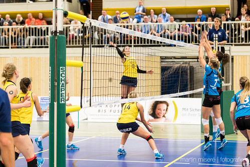 "3. Heimspiel vs. Volleyball-Team Hamburg • <a style=""font-size:0.8em;"" href=""http://www.flickr.com/photos/88608964@N07/32003259323/"" target=""_blank"">View on Flickr</a>"
