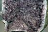 Amethyst (Brazil) 8 (James St. John) Tags: amethyst quartz brazil geode geodes